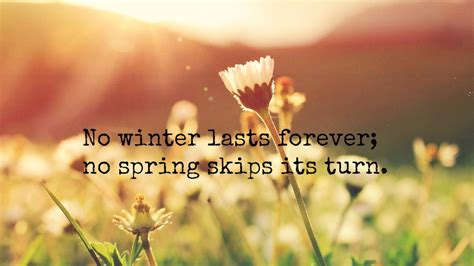 No Lasts Forever by No Winter Lasts Forever Be Kitschig