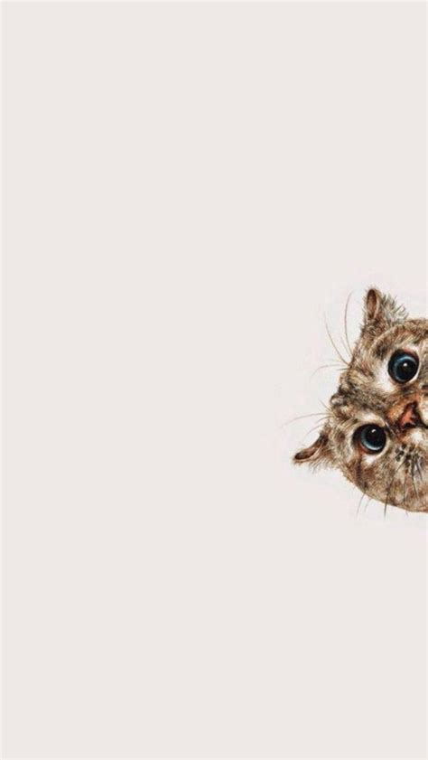 wallpaper for iphone cat simplistic cat iphone 5 wallpaper 640x1136