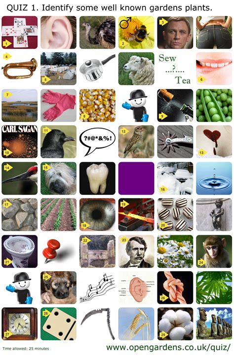 Garden Of Quiz Open Gardens The Uk National Directory Garden Plants Quiz