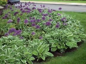 Desiging a perennial flower bed glenns garden gardening blog