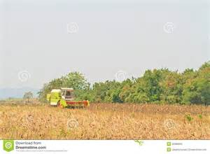 sunflower harvesting machine sunflower stock photos image 32380603