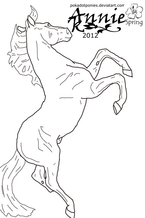breyer coloring pages coloring home
