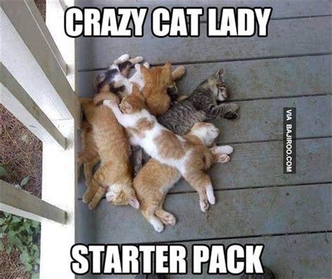 Random Cat Meme - random collection of funny photos 29 pics bajiroo com
