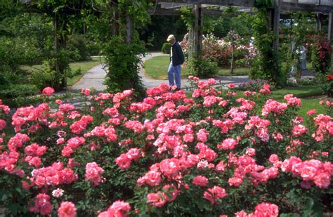 Ontario Royal Botanical Gardens Royal Botanical Gardens Ontario