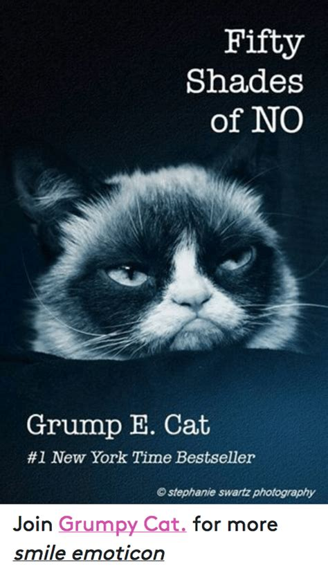 grumpy cat joins cats on 25 best memes about grumpy cat and shade grumpy cat and