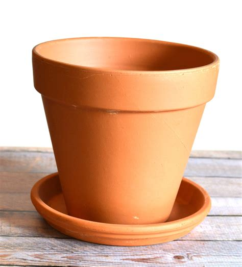 terracotta pots how to update an old terracotta pot into something new