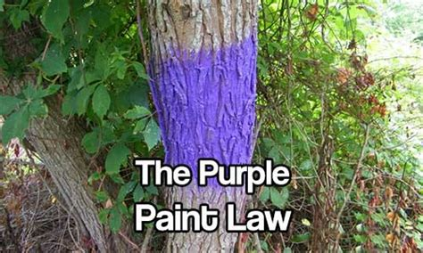 purple paint law the purple paint law shtf prepping homesteading central