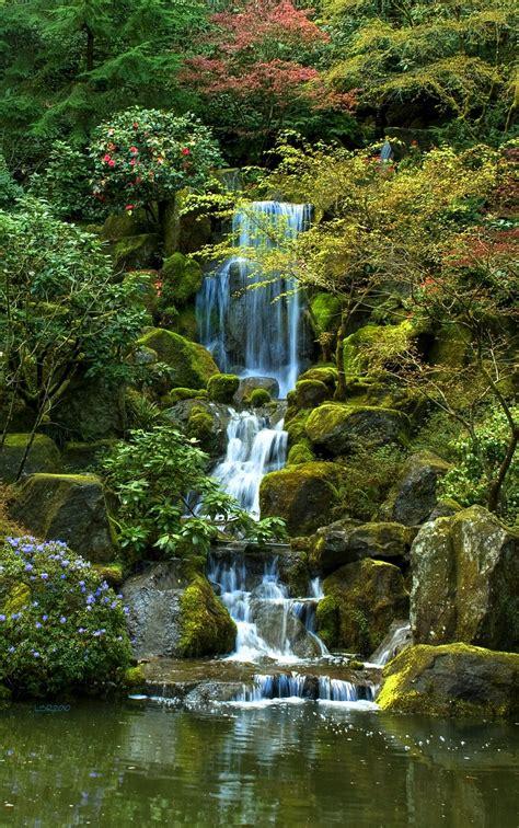 garden falls tea garden falls hdr creme