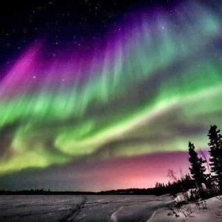 northern lights near fairbanks alaska amazing