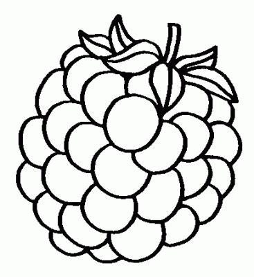 imagenes uvas para pintar dibujos de frutas dibujos