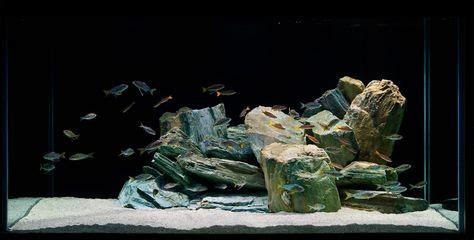 How To Set Up An Aquascape by Malawi Tank On Cichlids Cichlids And