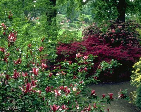 Flower Garden Pictures Free Garden Screensavers And Wallpaper Wallpapersafari