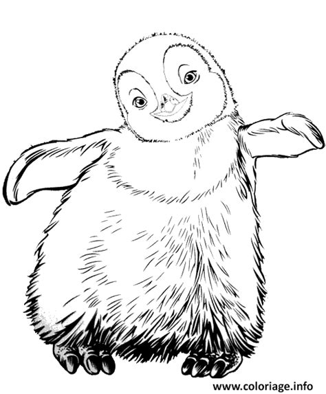 Coloriage Pingouin Bebe Dessin