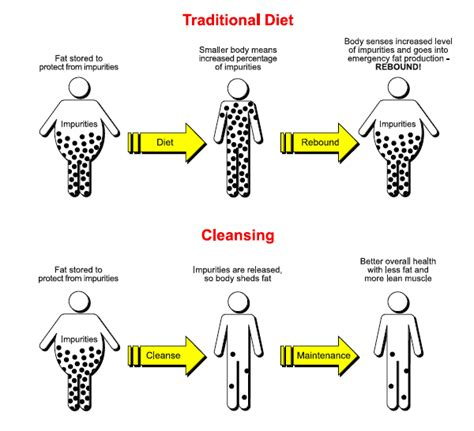Https Bengreenfieldfitness 2013 08 How To Detox Your Home by Weekend Diversion The Last Detox Diet You Ll Try