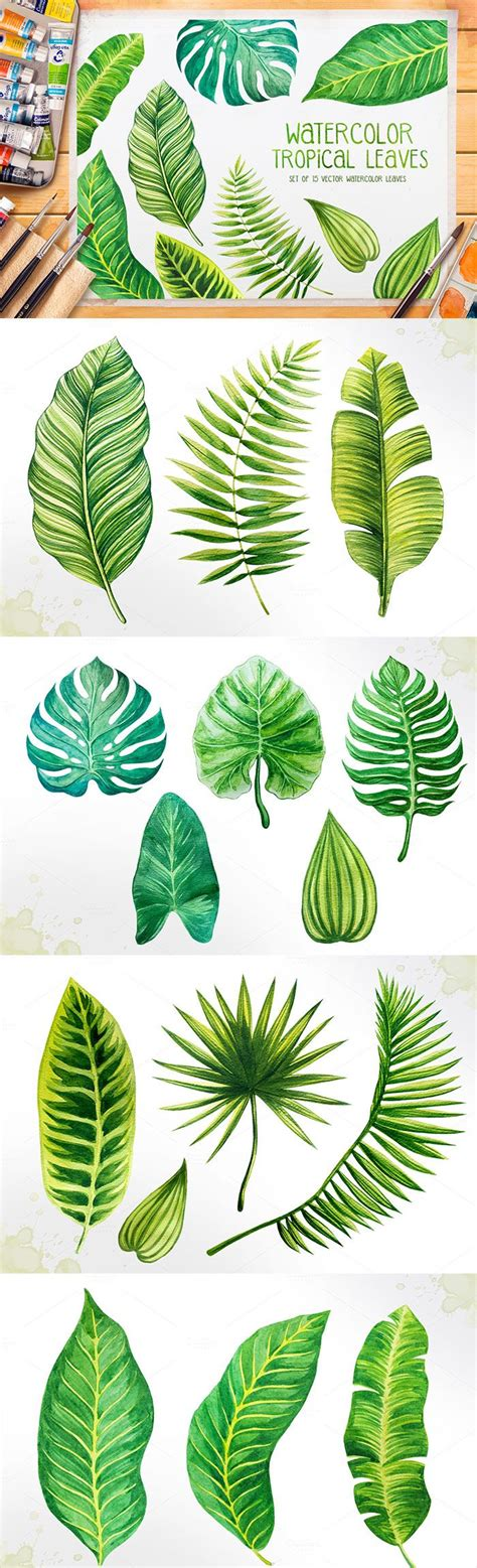 Poster Set Of 2 Tropical Leaves Cactus 2xa4 set of 15 watercolor tropical leaves illustrations