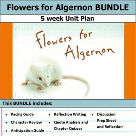 flowers for algernon book report the 25 best ideas about flowers for algernon on