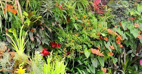vertical garden jakarta apa itu taman vertikal atau