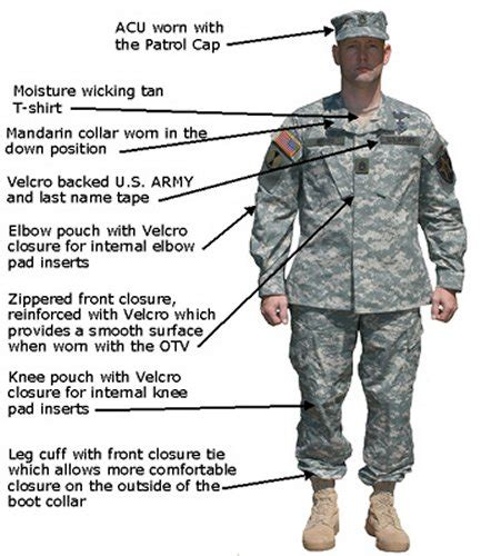 Jaket Bloods Abu pictures and definitions for us uniforms