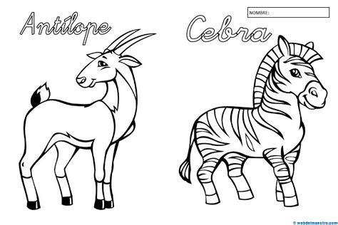 imagenes de animales y plantas para colorear animales para colorear ii web del maestro