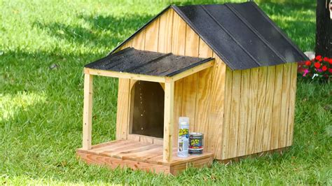 make dog house how to make a waterproof dog house official site flex seal 174 family of products