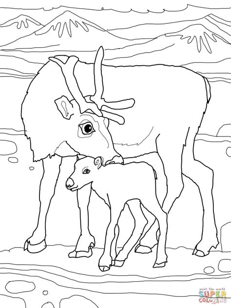coloring pages of baby reindeers baby reindeer with mother coloring online super coloring