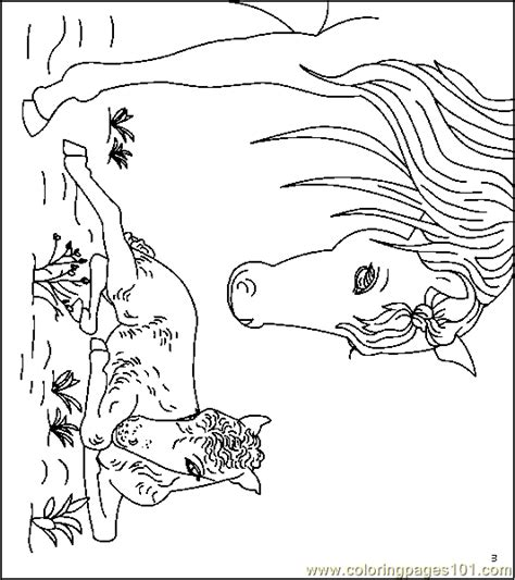 coloring pictures of dogs and horses 84 coloring pictures of dogs and horses dog