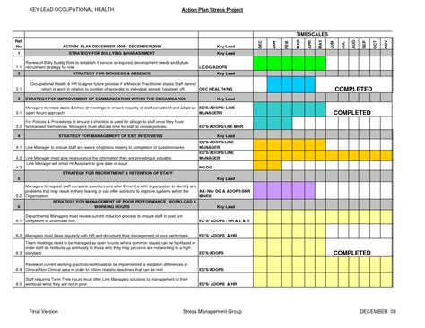 10 best images of professional development gantt chart