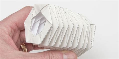 Folding Paper Accordion Style - shelter