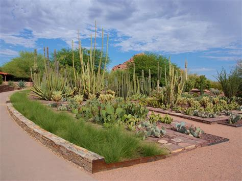 Best Botanical Gardens In The Us Best Botanical Gardens In The Us Our Picks For The Best Botancial Gardens Travel Channel