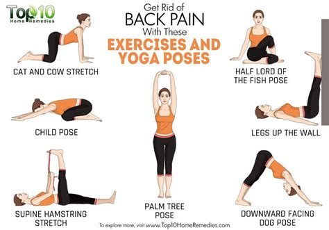 Printable Yoga Poses For Back Pain   get rid of back pain with these exercises and yoga poses