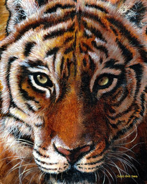 Painting Tiger tiger paint by calliefink on deviantart
