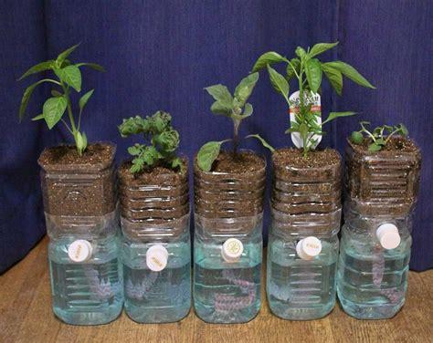 membuat nutrisi organik untuk hidroponik cara membuat tanaman hidroponik beserta contohnya tips