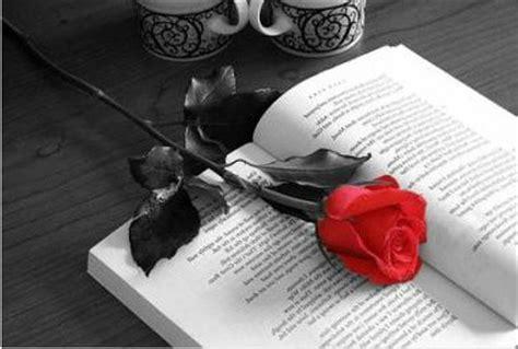 libro la rosa de los diada de sant jordi artland2002