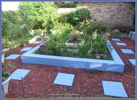 Sunset Gardening Zones - garden structures forum raised beds what do you use for walls garden org