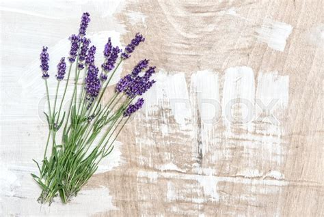 Wallpaper Bunga Floral Flower Shabby Chic Vintage Rustic 210602 lavender flowers on rustic wooden background fresh blossoms shabby chic stock photo colourbox