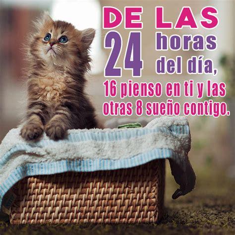 imagenes de buenos dias amor con gatitos 45 im 225 genes de gatitos tiernos con frases y mensajes