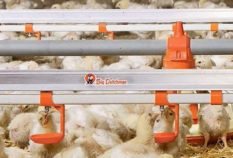 Jual Bibit Ayam Lung pembiakan ayam yang efisien berkat perangkat kandang dan perlengkapan pakan yang modern