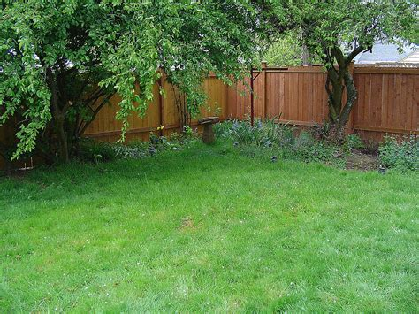 backyard privacy triyae com fence backyard privacy various design