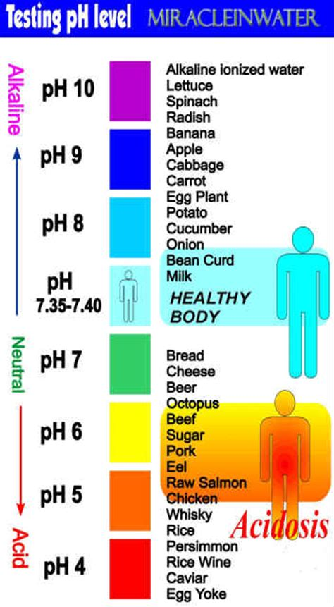 proper ph balance is critical for good health what is bodys ph indiahome club