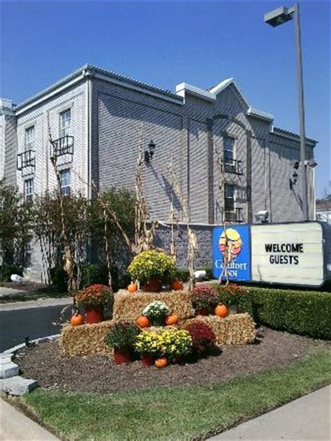 comfort inn west little rock fall savings at comfort inn west picture of comfort inn