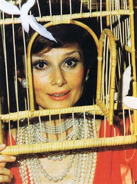 gli illuminati cantanti illuminati il surreale della baronessa rothschild