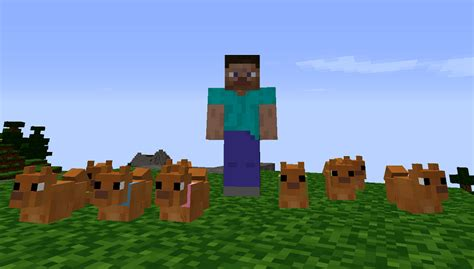 dogs mods minecraft mods mapping and modding minecraft forum minecraft quotes