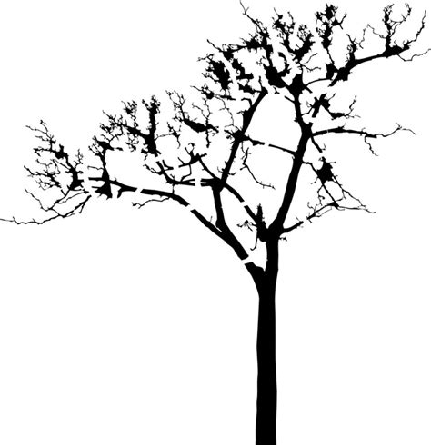tree stencil template tree silhouette stencil clipart best