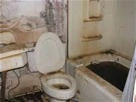 mold growth in bathroom mold growth archives mold awareness