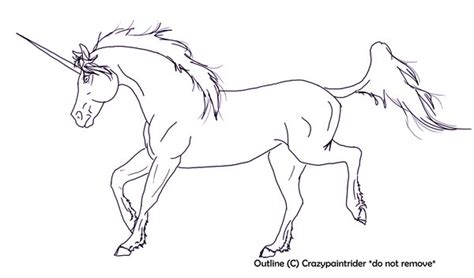 Unicorn Outline by Unicorn Outline Images
