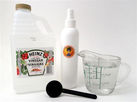 White House Detox Vinegar For Kidney Stones 25 uses for apple cider vinegar white vinegar uses