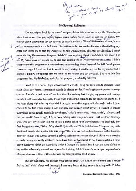 Essay About My Future by My Future Essay
