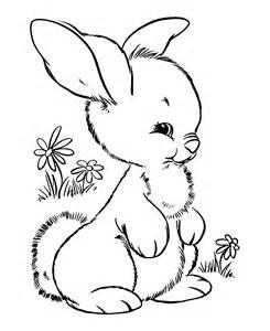 gambar mewarnai kelinci murid 17