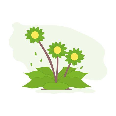 fiori di bach on line corso fiori di bach 3 176 livello in natura felicitas