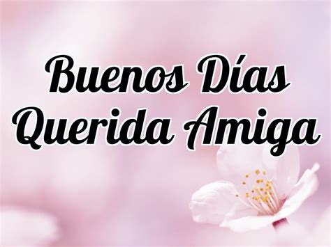 Imagenes Buenos Dias Querida Amiga | buenos d 237 as querida amiga hoy es el mejor d 237 a para ti